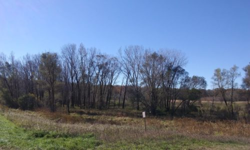 Vacant Land ~ Hillview Road